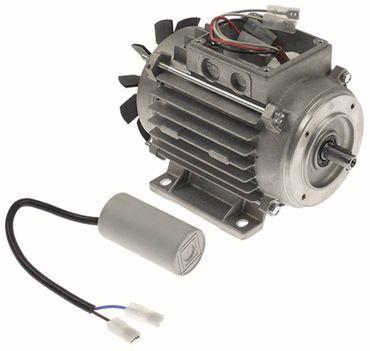 Cookmax Motor 1-MP63 A2 für 421002 Befestigungsmaß 80x100mm 50Hz