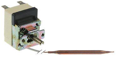 Bertos Thermostat für FC200GB, MM10EB Achse 6x4,6x22x110mm 1CO