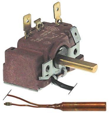 Abner Thermostat für Bain-Marie-Wagen 1378, CR3200C, EVT3-2x22mm