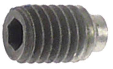 ACP Madenschraube mit Schraubensicherungslack für Mikrowelle