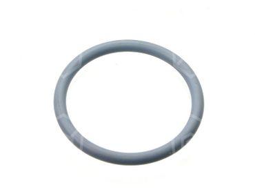 Ambach O-Ring für Entleerhahn Aussen ø 64,66mm