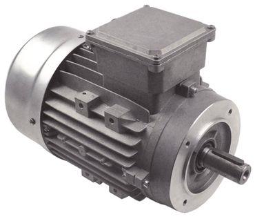 Fimar Motor TS90L4 für Teigknetmaschine IM38CN, IM25CN, IM38FN