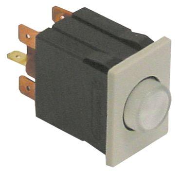 Palux Drucktaster für 440094, 440078, 440086 klar 250V 1NO/1NC