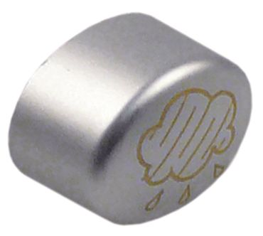 Unox Drucktaste für XF113, XF133, XF090P silber Symbol Dampf gold