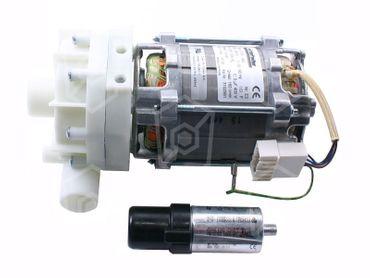 HANNING UP60-442 Pumpe für Winterhalter GS310, GS302, GS315 50Hz