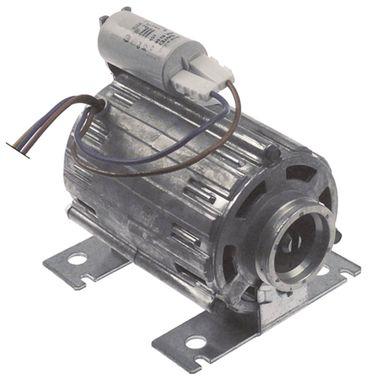 RPM C013726 Pumpenmotor für Astoria-Cma Gloria-DISPLAY-LCL Viva-S