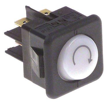 Wippentaster für Spülmaschine Jemi GS-19, GS-18, GS-6AF, Sammic