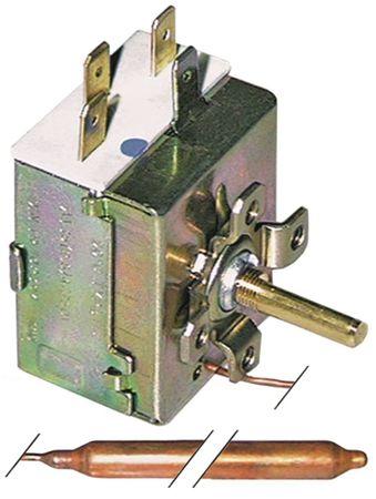 Bertos Thermostat für E6PL60B, E9BM4M max. Temperatur 120x95mm