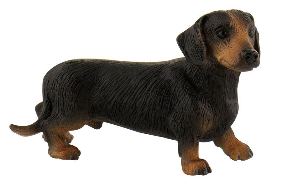 Hundeserie - Kurzhaardackel Apollo - Spielfigur