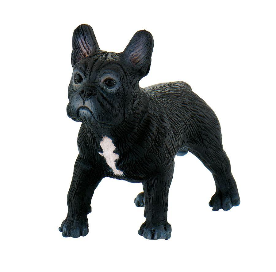 Hundeserie - Französische Bulldogge Sammy - Spielfigur