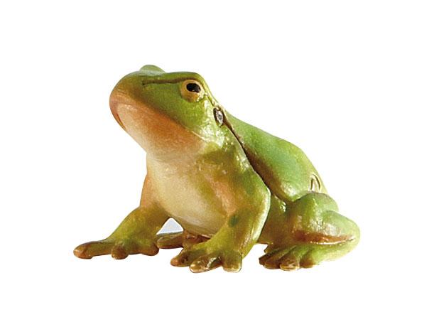 Regenwaldtiere - Laubfrosch - Spielfigur