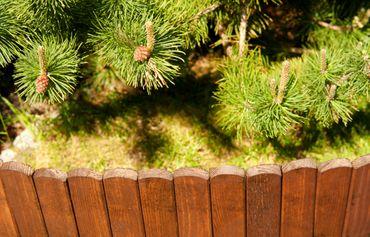 Floranica® Beetzaun 203x20 cm aus Holz als Steckzaun Rollboarder, Beeteinfassung, Beetumrandung, Rasenkante, Beetzaun oder Palisade - wetterfest imprägniert – Bild 5