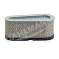 Luftfilter für Briggs & Stratton Motor 493909 496894S
