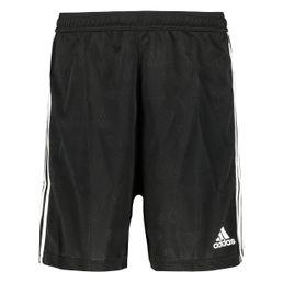 adidas Performance Tan JQD Shorts Herren Sport Shorts black