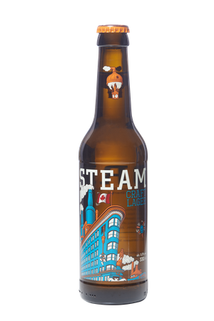 Craft Lager 12x can 355ml