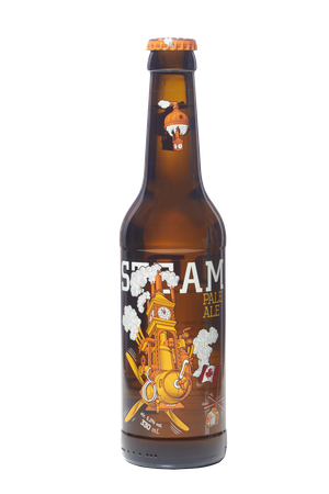 Pale Ale 12x bottles 330ml