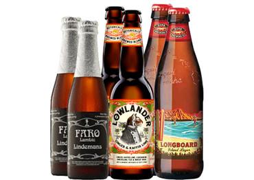 Bier Grill-Paket Huhn mit 6 Bierflaschen