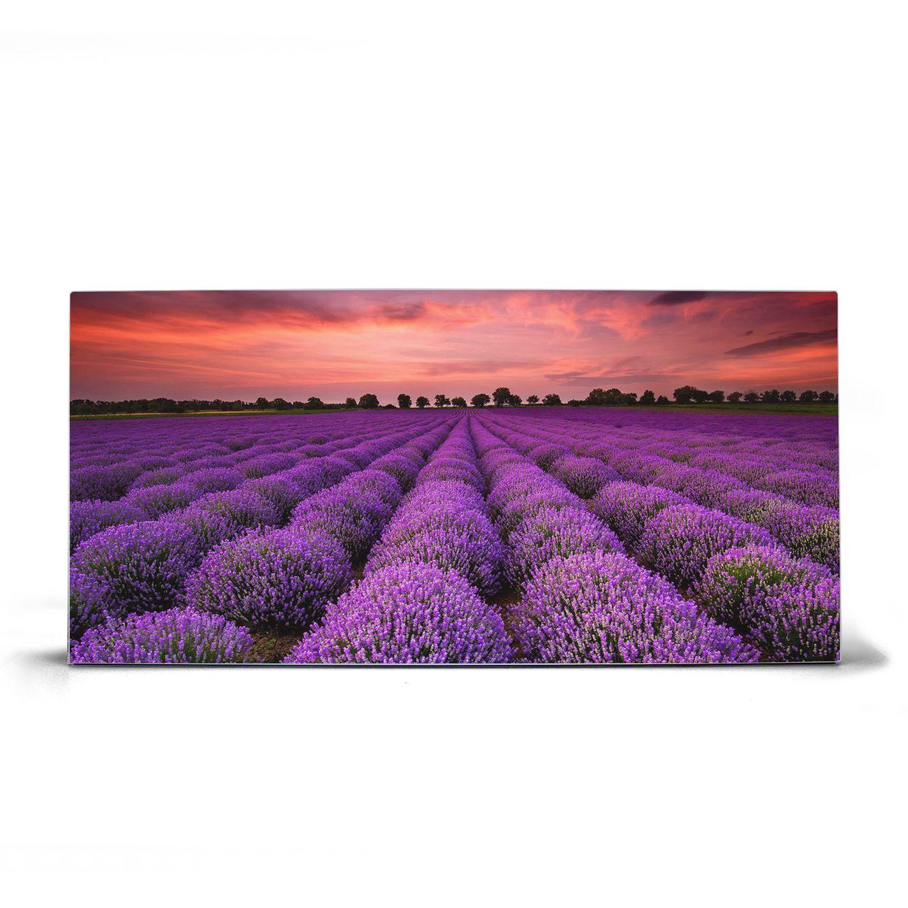 Magnettafel silber Querformat Lavendelfeld