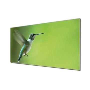 Küchenrückwand Glas Motiv Kolibri