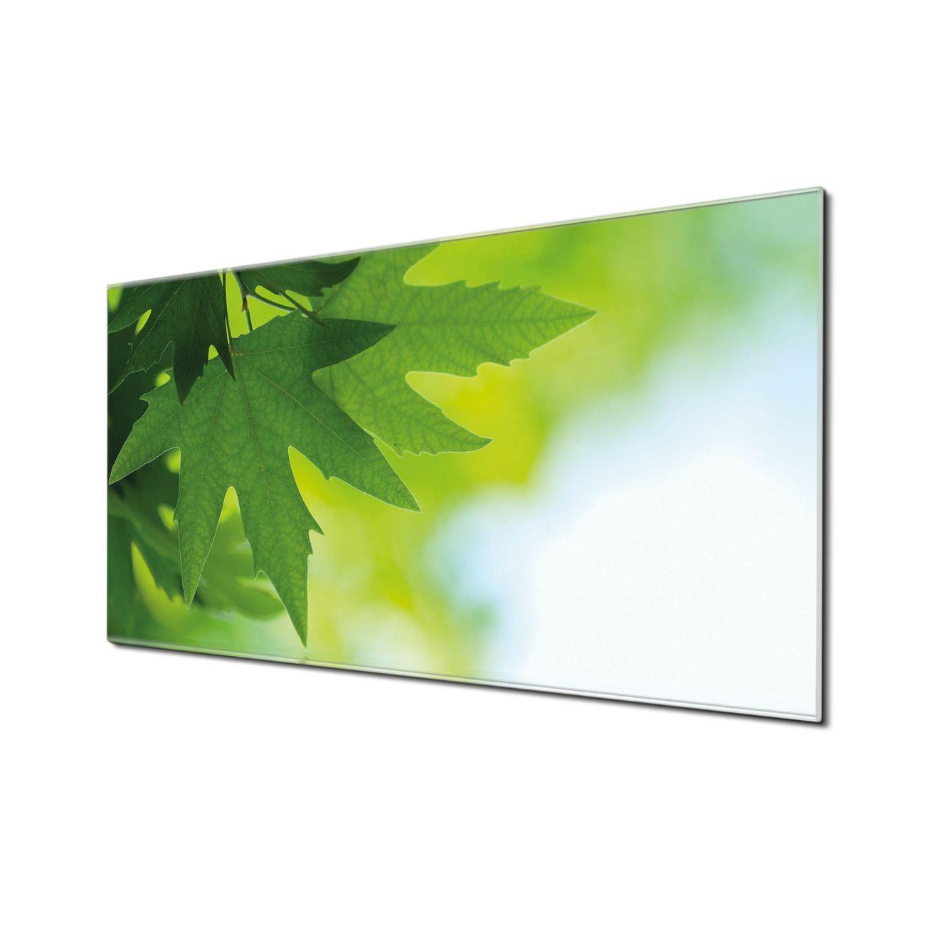 Küchenrückwand Glas Motiv Blättertraum
