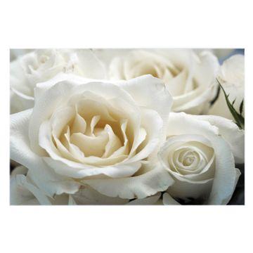 Küchenrückwand Glas Motiv White Roses