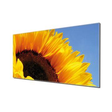 Küchenrückwand Glas Motiv Sonnenblume