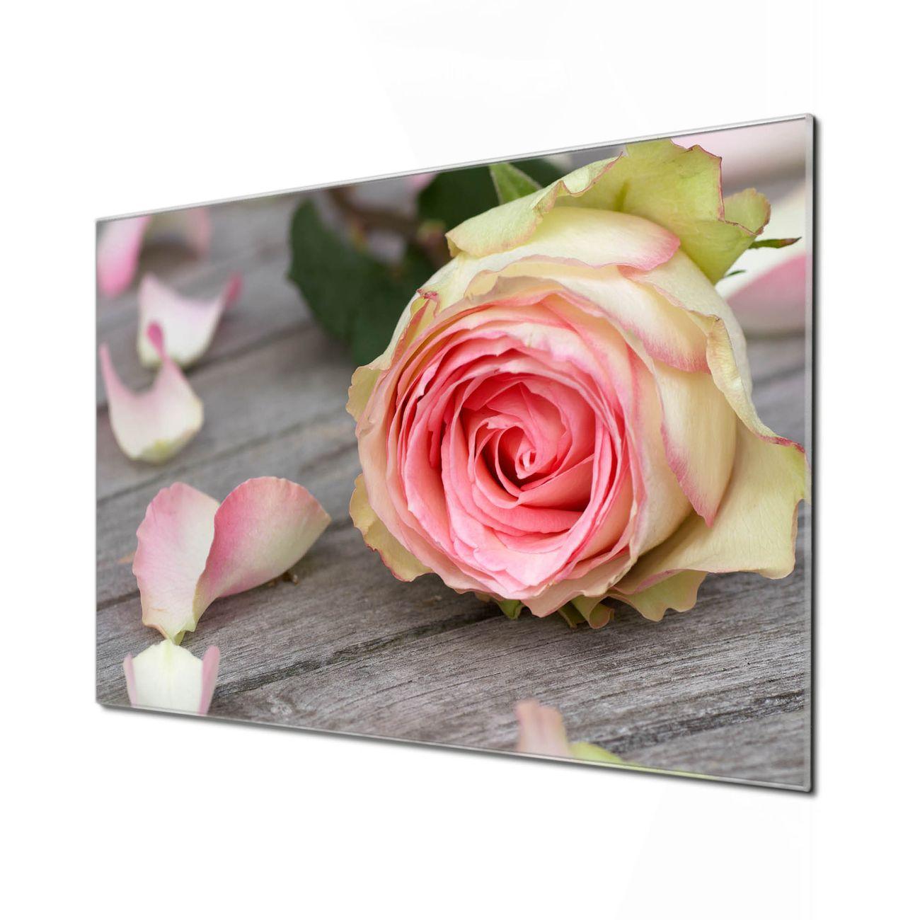 Küchenrückwand Glas Motiv Rosa Rose