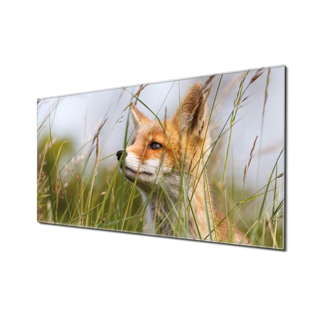 Küchenrückwand Glas Motiv Fuchs