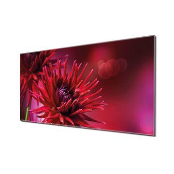 Küchenrückwand Glas Motiv Rote Dahlien