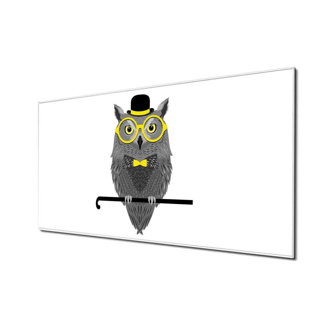 Küchenrückwand Glas Motiv Owling