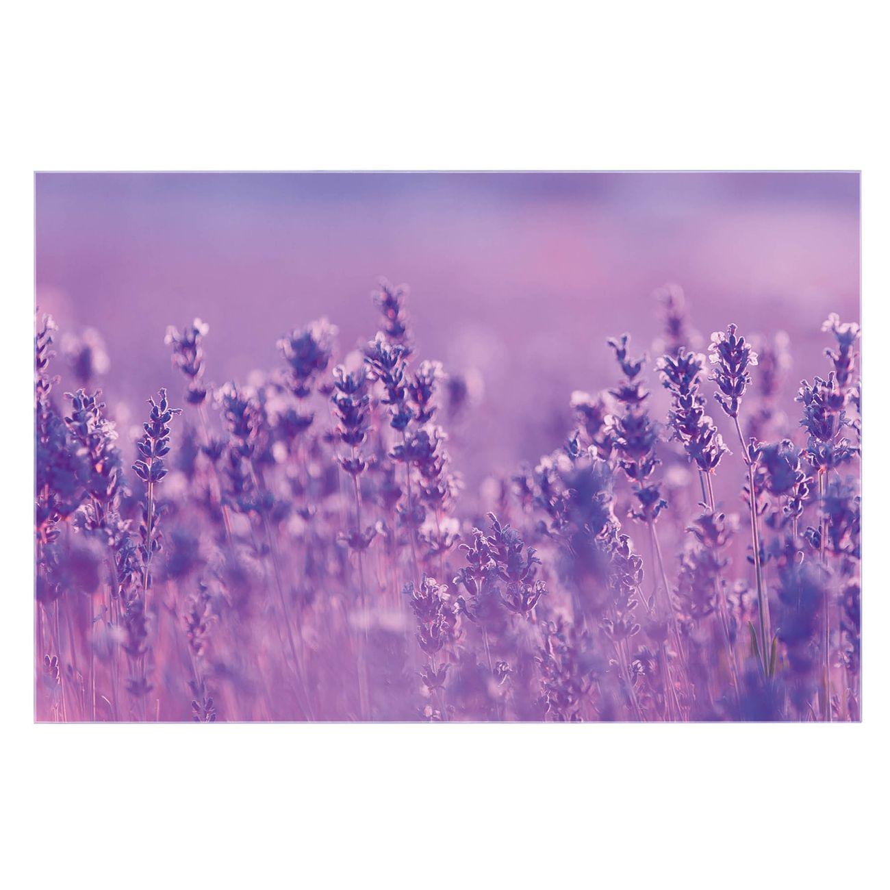Küchenrückwand Glas Motiv Lavendelmeer