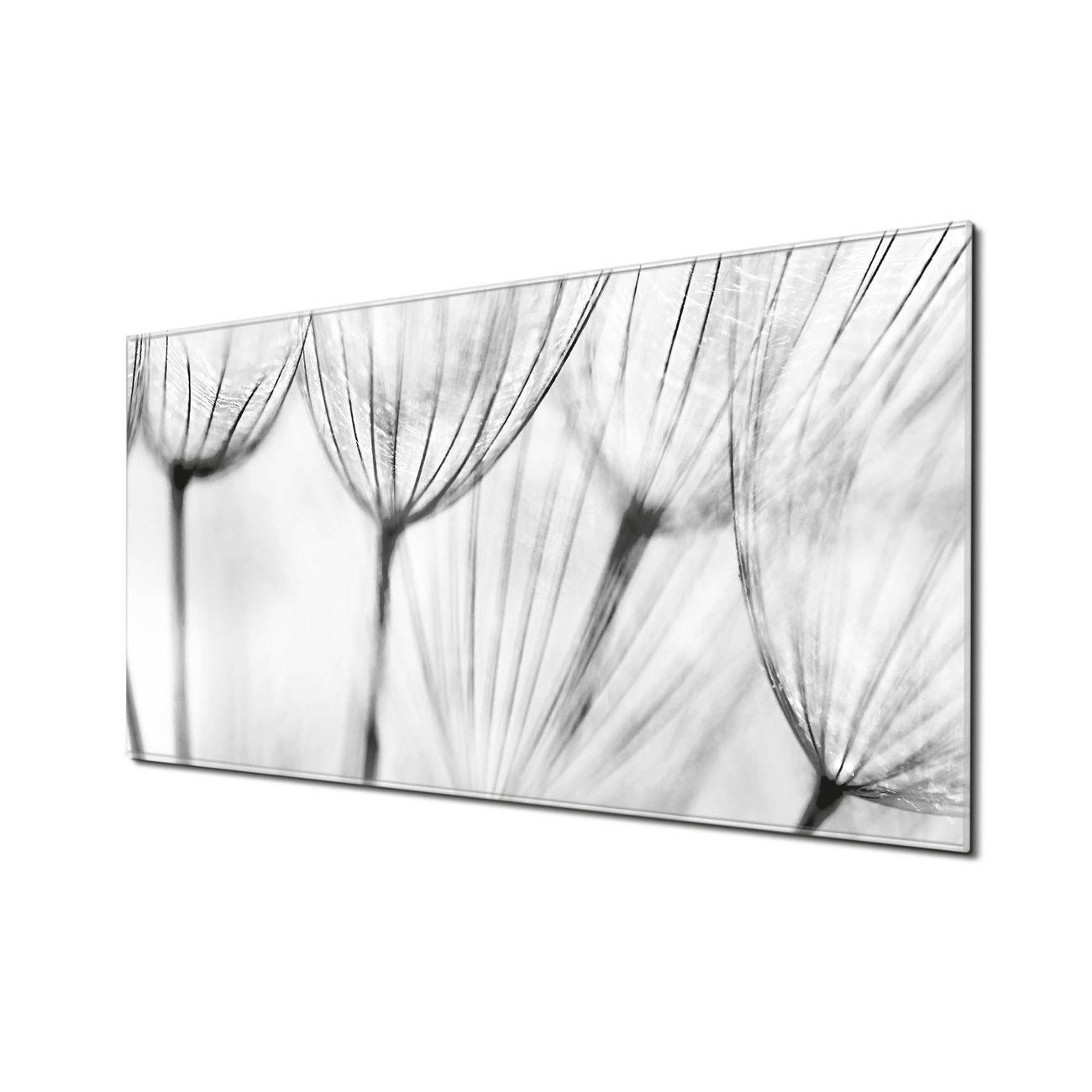 Küchenrückwand Glas Motiv Pusteblumen SW