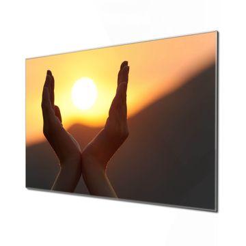 Küchenrückwand Glas Motiv Sonnenanbeter