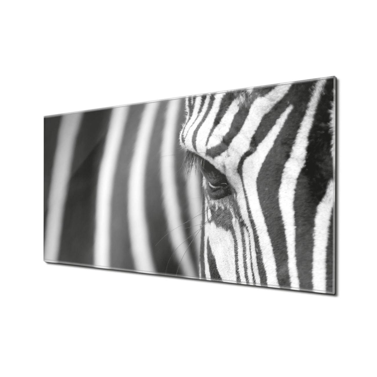 Küchenrückwand Glas Motiv Zebra En Face