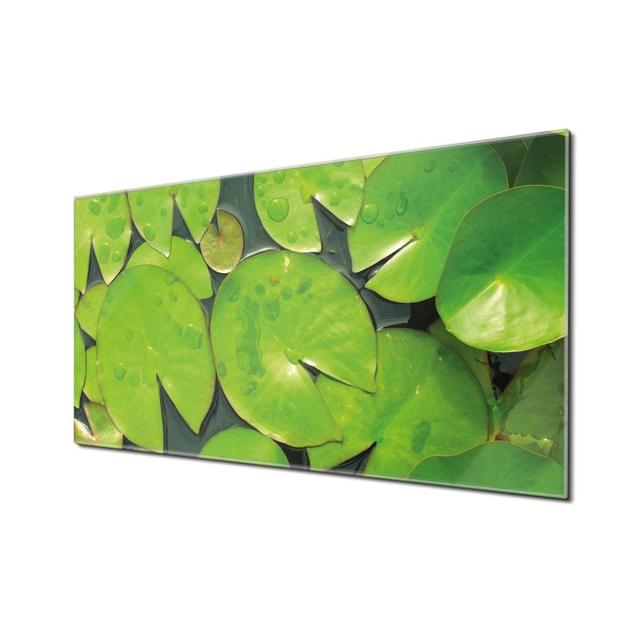 Küchenrückwand Glas Motiv Seerosenblätter