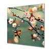 Küchenrückwand Glas Motiv Sakura – Bild 1
