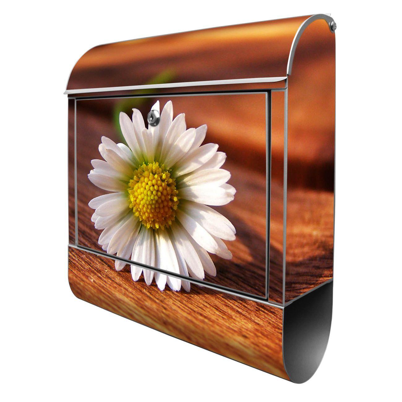 Großer Stahl Briefkasten Gänseblümchen
