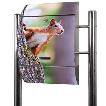 Edelstahl Standbriefkasten Eichhörnchen