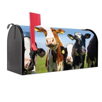 Amerikanischer Briefkasten Kühe