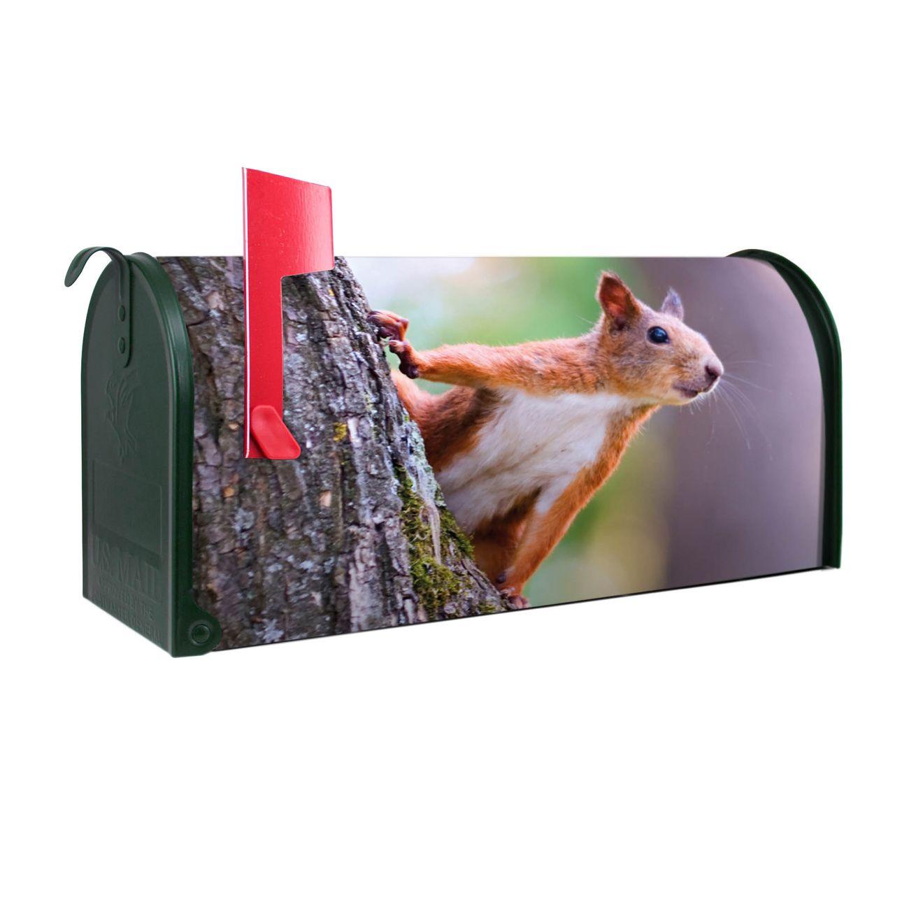 Amerikanischer Briefkasten Eichhörnchen
