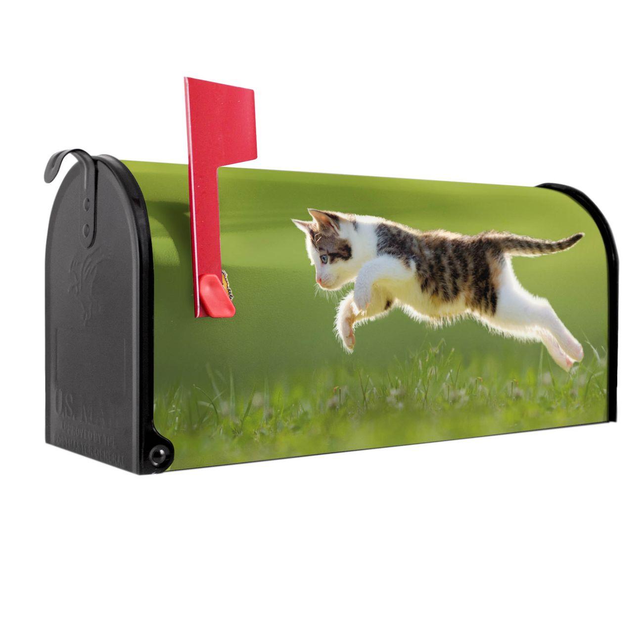 Amerikanischer Briefkasten Jagende Katze