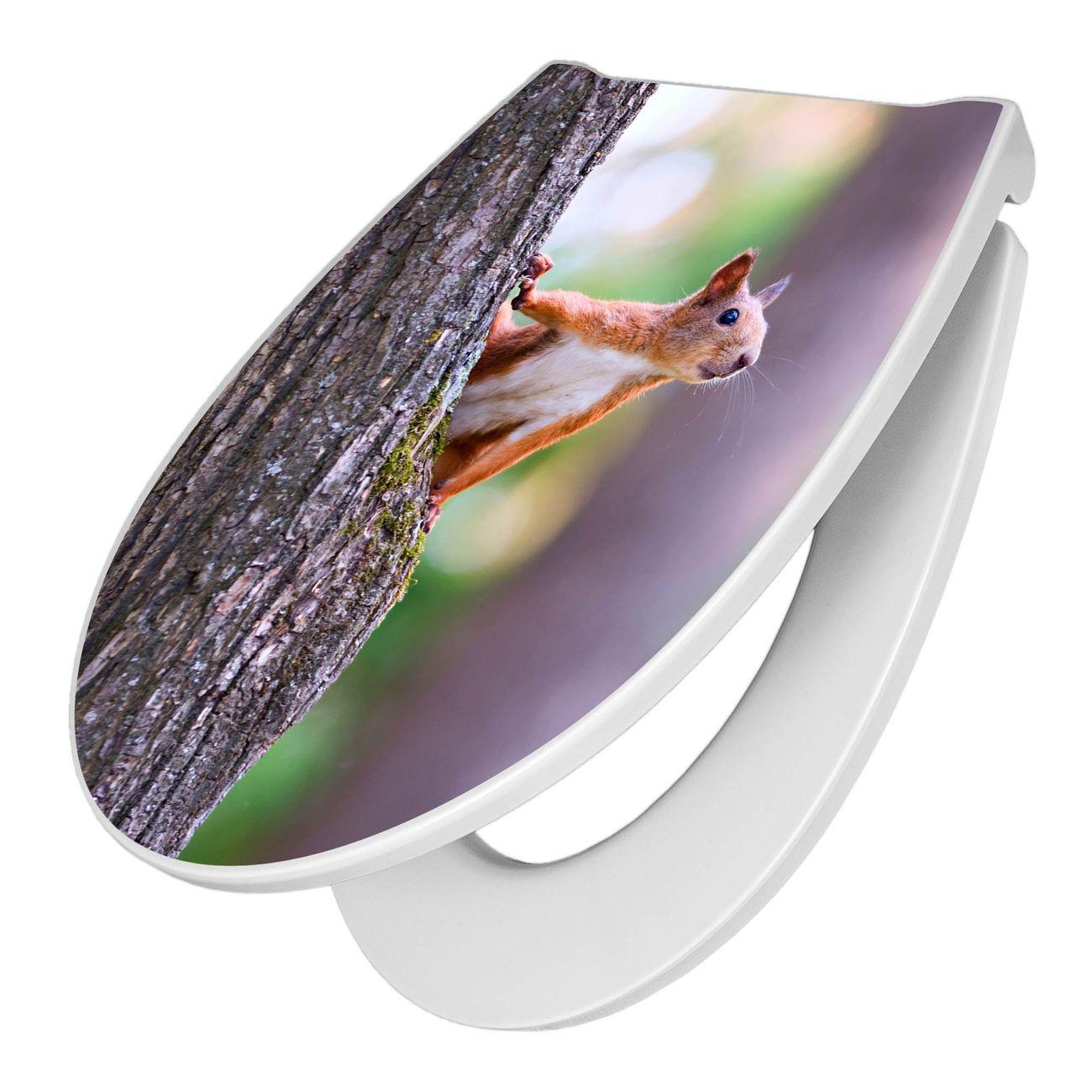 Premium WC-Sitz Softclose Absenkautomatik Motiv Eichhörnchen