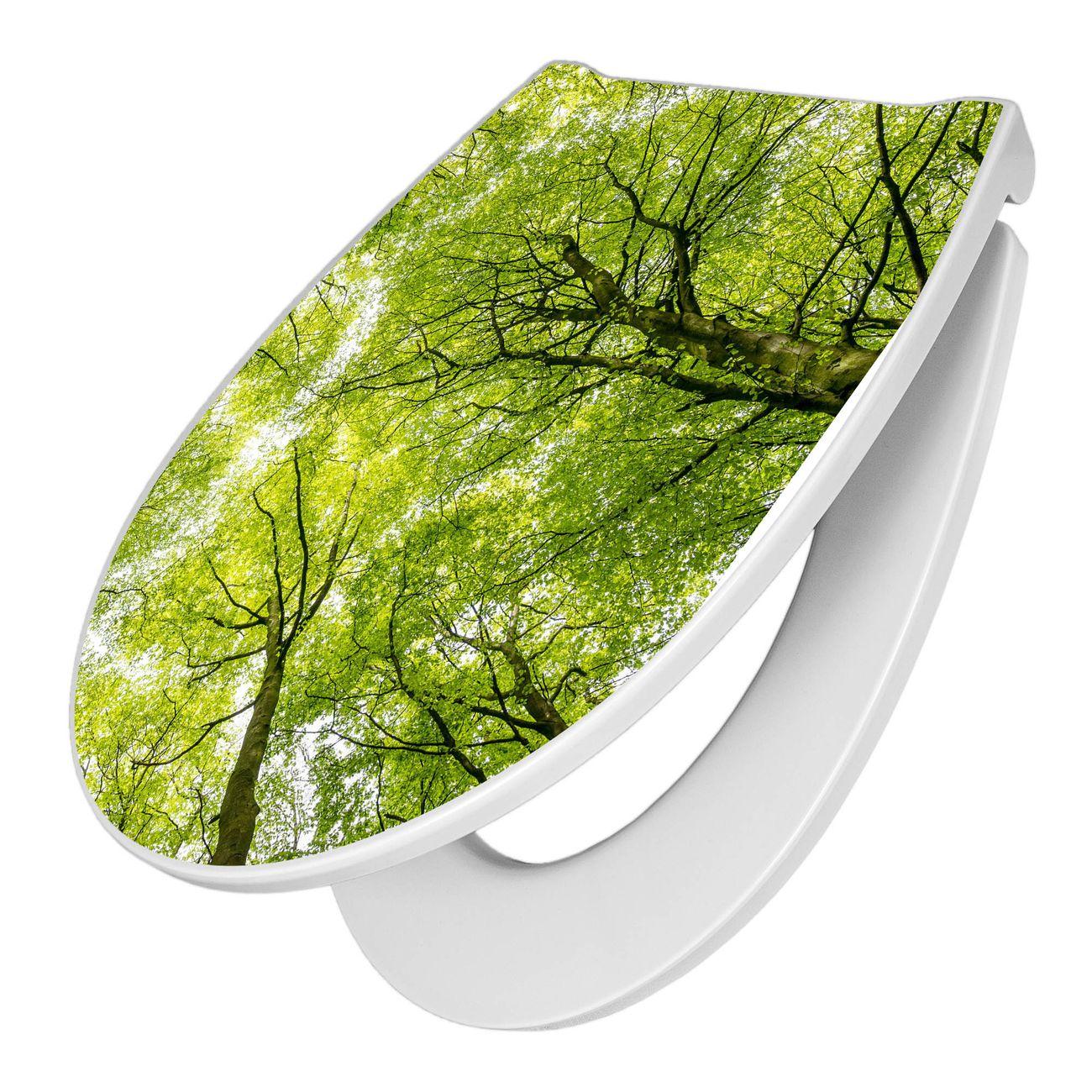 Premium WC-Sitz Softclose Absenkautomatik Motiv Zwischen Bäumen