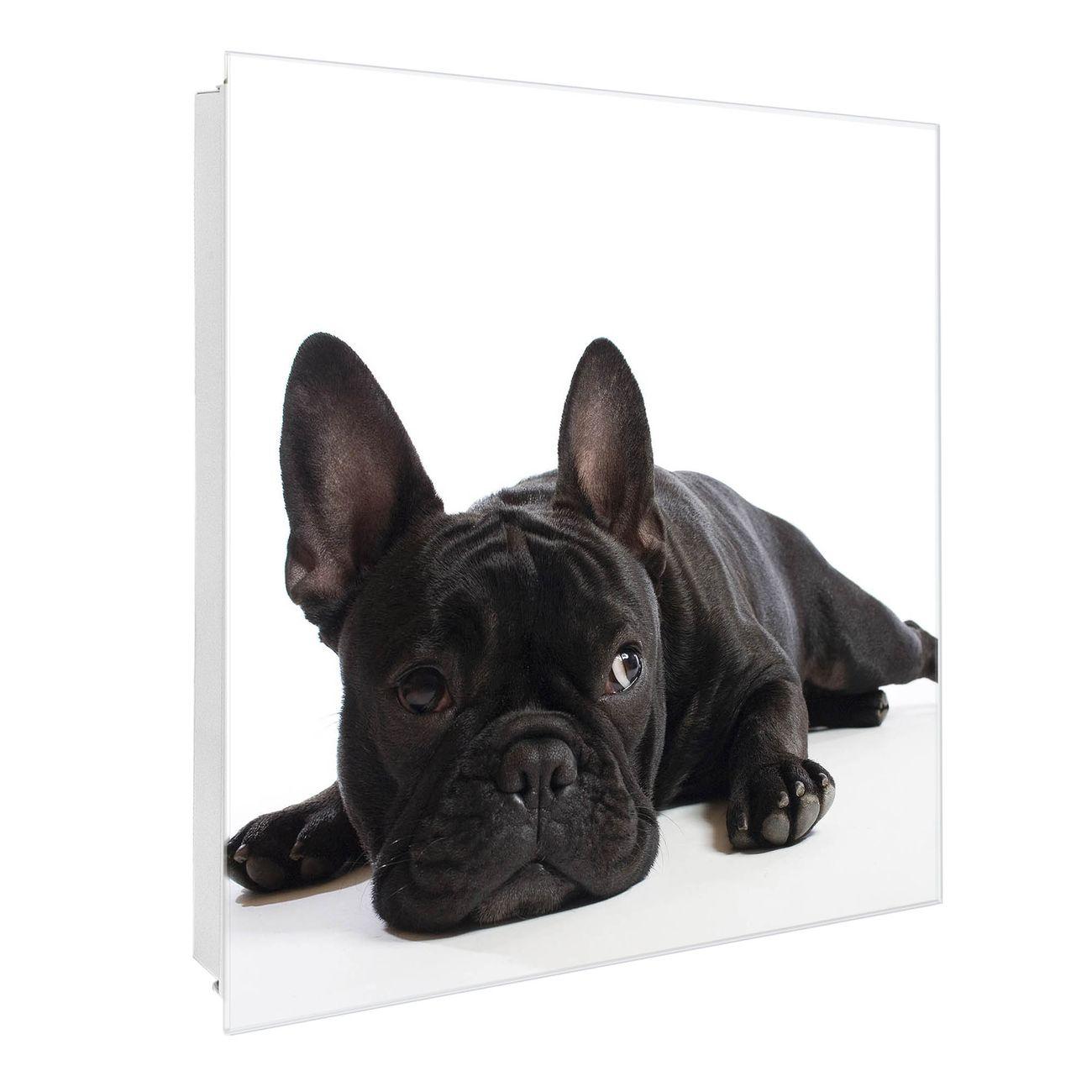 Schlüsselkasten Glas Motiv Bulldogge