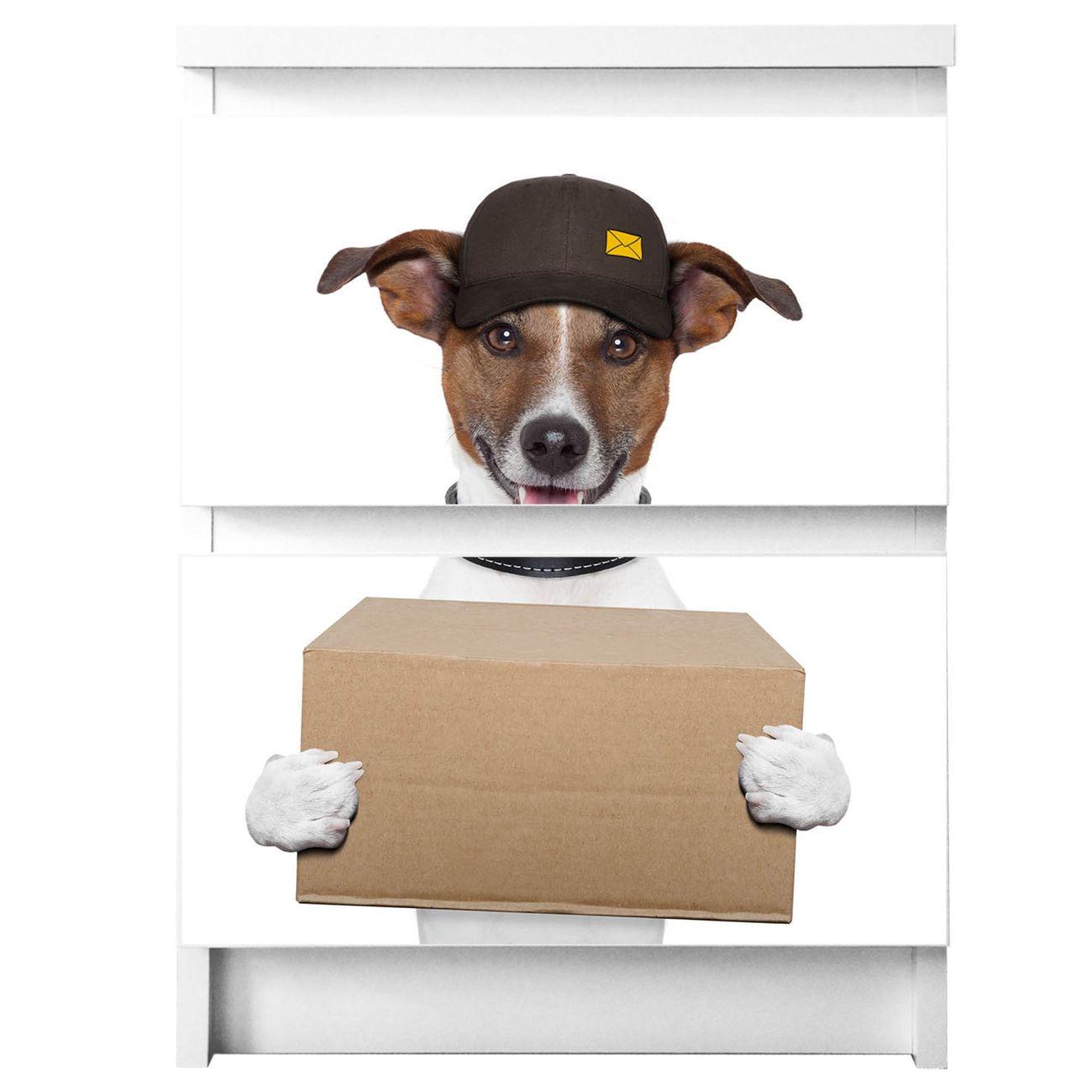 Möbelsticker für Ikea MALM Motiv Paketdienst Jack Russel