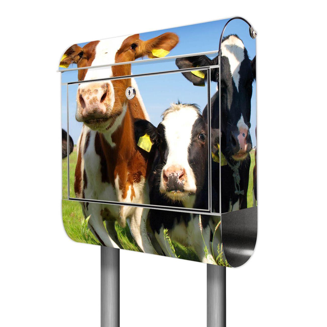 Standbriefkasten Edelstahl Kühe
