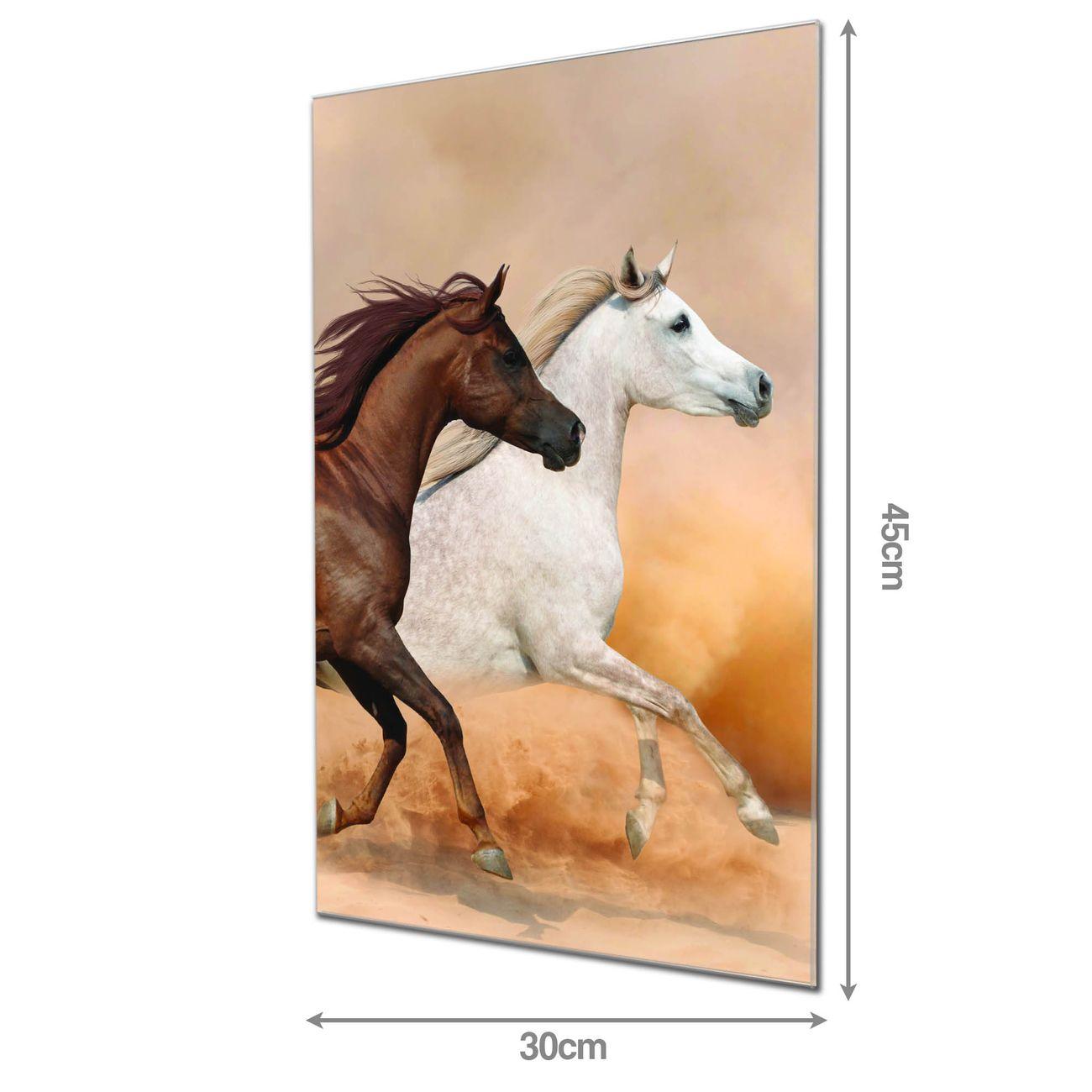 banjado Glas Magnettafel 4 Magneten Magnetboard viele Größen Motiv Wildes Pferd