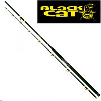 Black Cat Passion Pro II 3,00m 300-600g Wallerrute