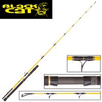 Black Cat Spin Mix 2,20m 120g Wels Spinnrute