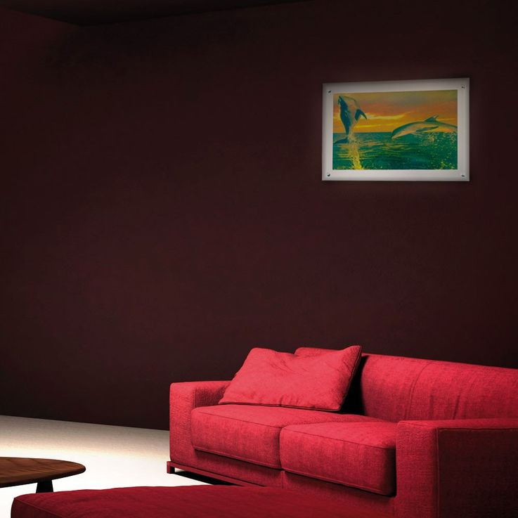 Laufbild Delfin mit Deko-Effekt und Spiegel-Glas – Bild 4